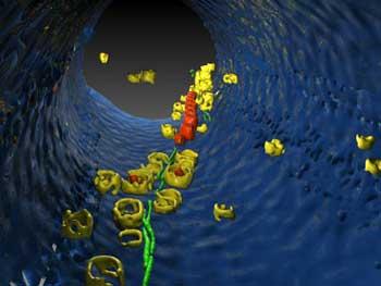 Bild: Max-Planck-Institut für Biochemie